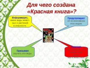 Для чего создана «Красная книга»? Информирует, какие виды живот-ных и растени