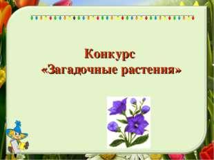 Конкурс «Загадочные растения»