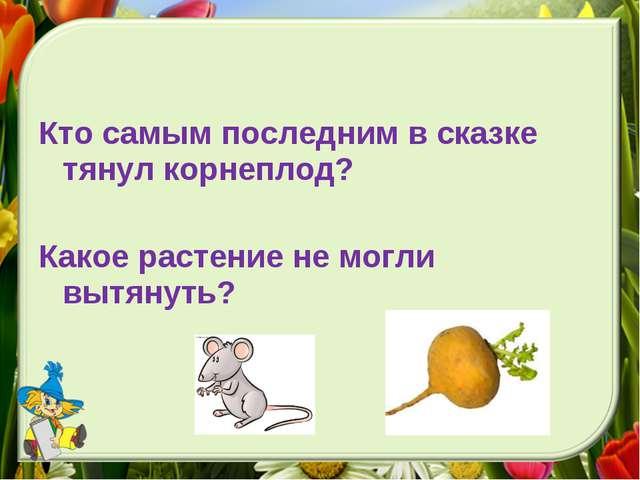 Кто самым последним в сказке тянул корнеплод? Какое растение не могли вытянуть?