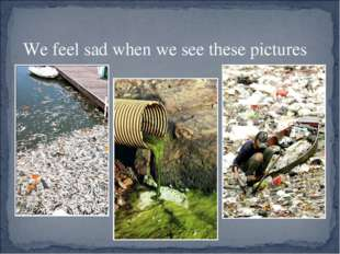 We feel sad when we see these pictures