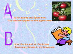 is for apples and apple-tree. You can see apples on the apple-trees. is for