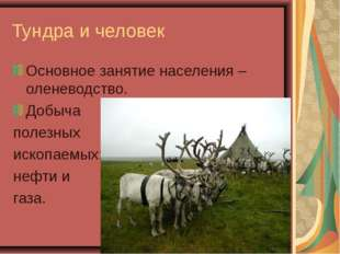 Тундра и человек Основное занятие населения – оленеводство. Добыча полезных иско