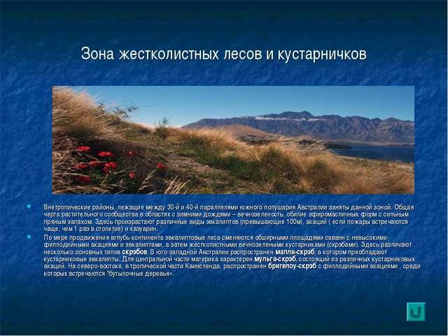 Зона жестколистных лесов и кустарничков Внетропические районы, лежащие между...