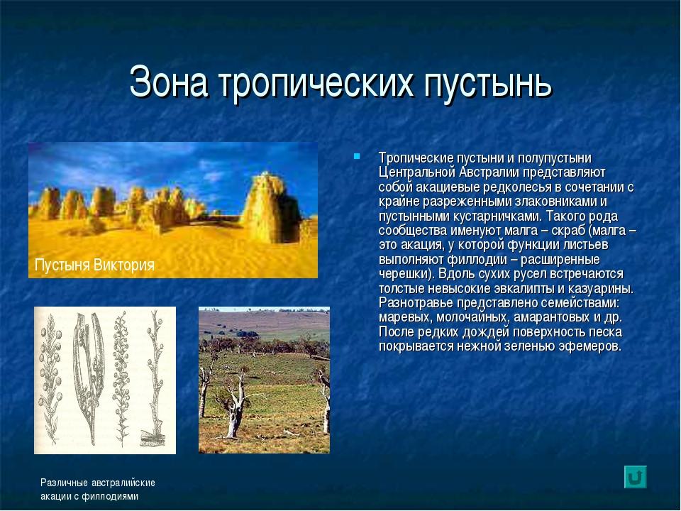 Зона тропических пустынь Тропические пустыни и полупустыни Центральной Австра...