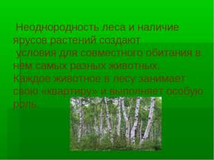 Неоднородность леса и наличие ярусов растений создают условия для совместног