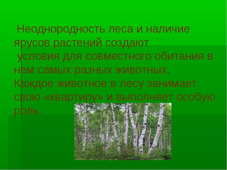 Неоднородность леса и наличие ярусов растений создают условия для совместног...