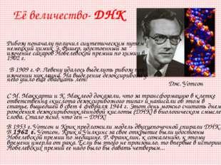 Рибозу поначалу получил синтетическим путем немецкий химик Э.Фишер, удостоен
