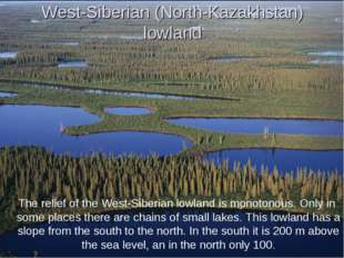 West-Siberian (North-Kazakhstan) lowland The relief of the West-Siberian lowl