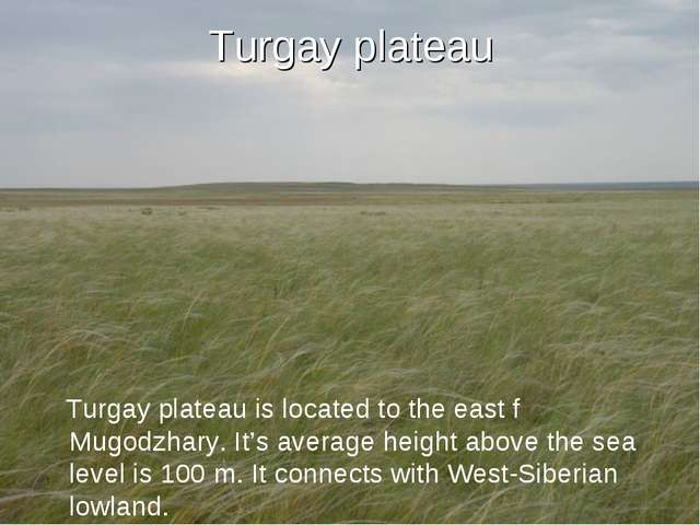 Turgay plateau Turgay plateau is located to the east f Mugodzhary. It's avera...