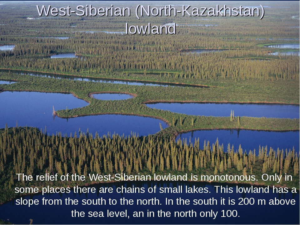 West-Siberian (North-Kazakhstan) lowland The relief of the West-Siberian lowl...