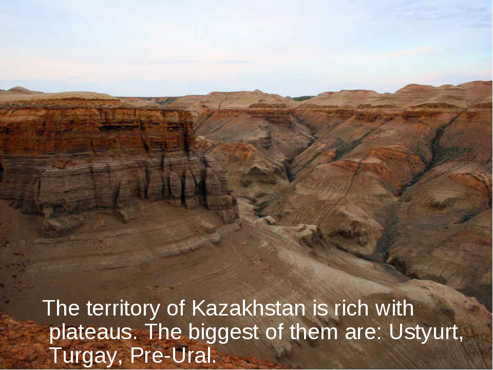 The territory of Kazakhstan is rich with plateaus. The biggest of them are:...