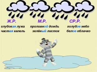 Ж.Р. М.Р. СР.Р. глубокая лужа проливной дождь голубое небо частая капель зел