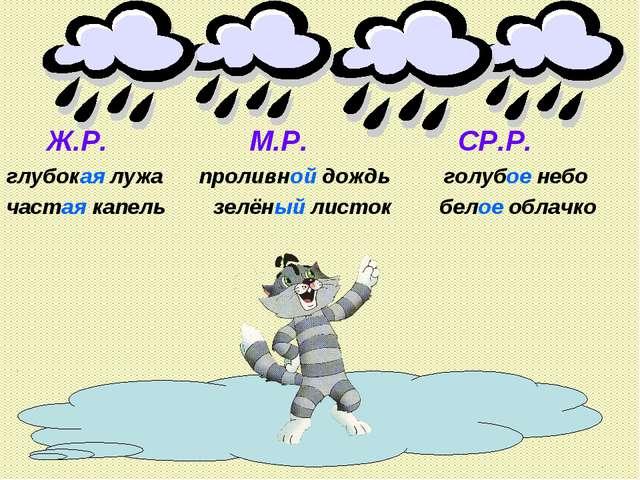 Ж.Р. М.Р. СР.Р. глубокая лужа проливной дождь голубое небо частая капель зел...