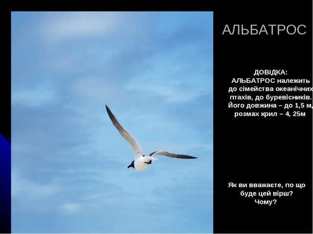 АЛЬБАТРОС ДОВІДКА: АЛЬБАТРОС належить до сімейства океанічних птахів, до буре...