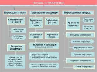 ЧЕЛОВЕК И ИНФОРМАЦИЯ ОРГАНЫ ЧУВСТВ информационные каналы человека ( зрение, с