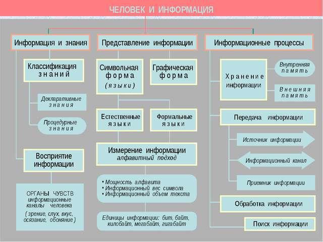 ЧЕЛОВЕК И ИНФОРМАЦИЯ ОРГАНЫ ЧУВСТВ информационные каналы человека ( зрение, с...
