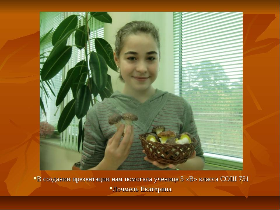 В создании презентации нам помогала ученица 5 «В» класса СОШ 751 Лочмель Екат...