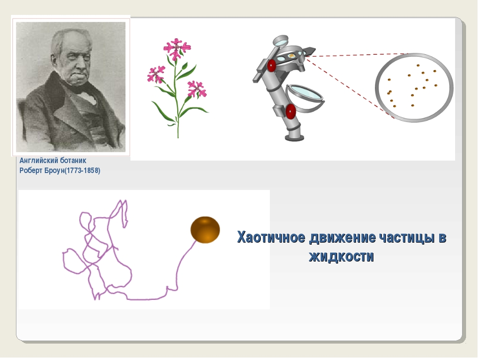 Хаотичное движение частицы в жидкости Английский ботаник Роберт Броун(1773-18...