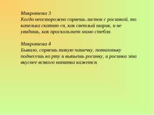 Микротема 3 Когда неосторожно сорвешь листок с росинкой, то капелька скатитс