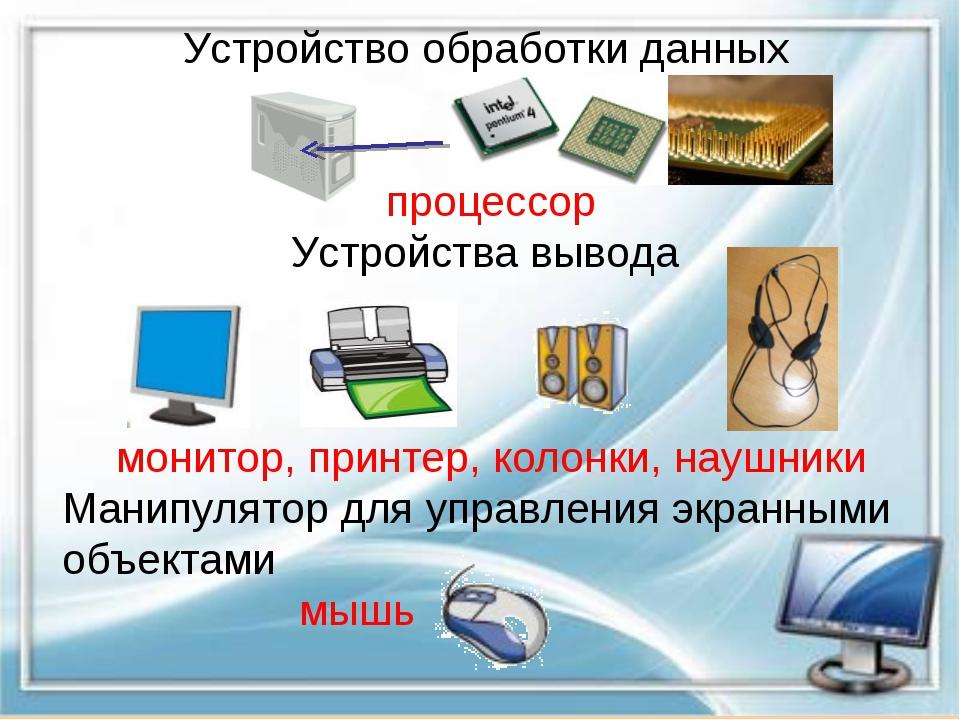 Устройство обработки данных процессор Устройства вывода монитор, принтер, кол...
