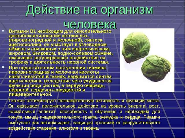Действие на организм человека Витамин B1 необходим для окислительного декарбо...