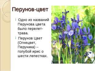 Перунов-цвет Одно из названий Перунова цвета было перелет-трава. Перунов Цвет