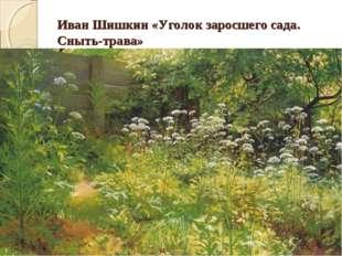 Иван Шишкин «Уголок заросшего сада. Сныть-трава»