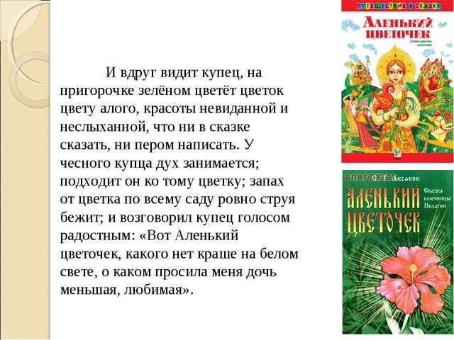 И вдруг видит купец, на пригорочке зелёном цветёт цветок цвету алого, красот...