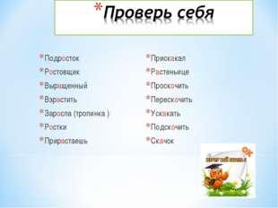 Подросток Ростовщик Выращенный Взрастить Заросла (тропинка ) Ростки Прирастае