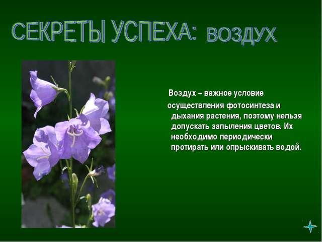 Воздух – важное условие осуществления фотосинтеза и дыхания растения, поэтом...