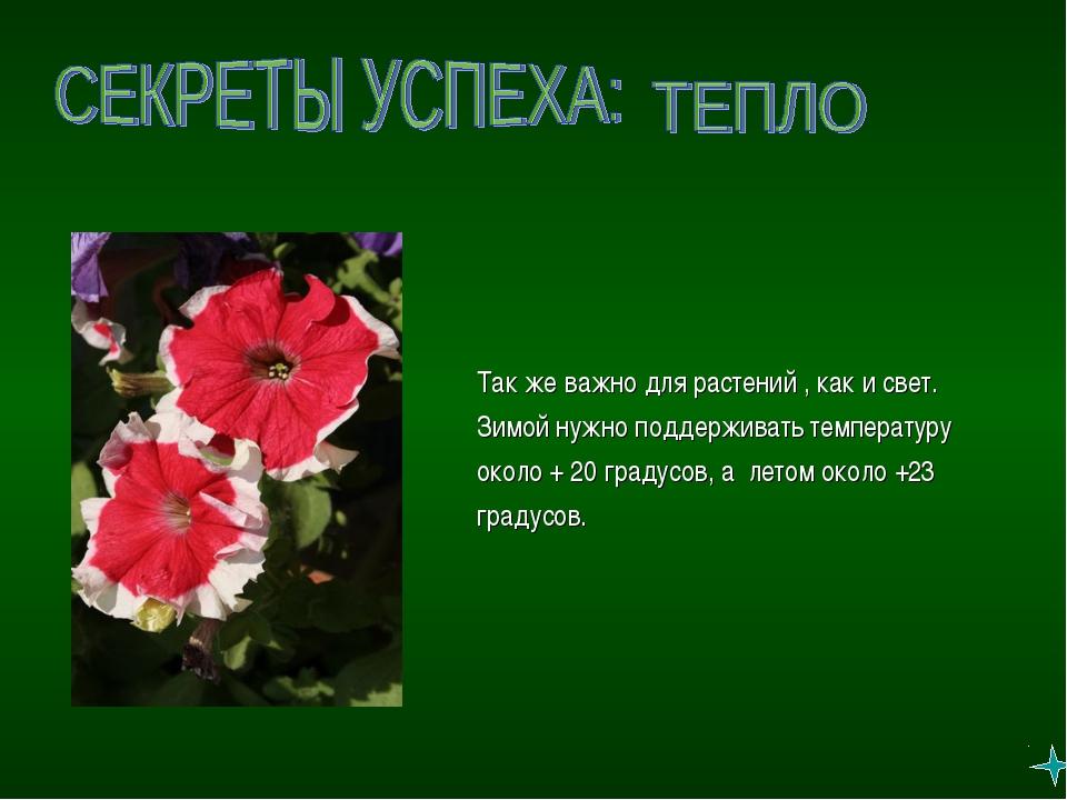 Так же важно для растений , как и свет. Зимой нужно поддерживать температуру...