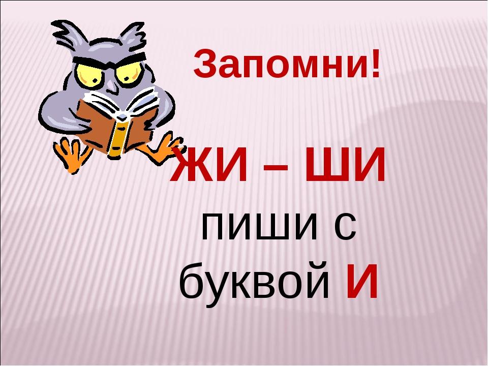 Запомни! ЖИ – ШИ пиши с буквой И