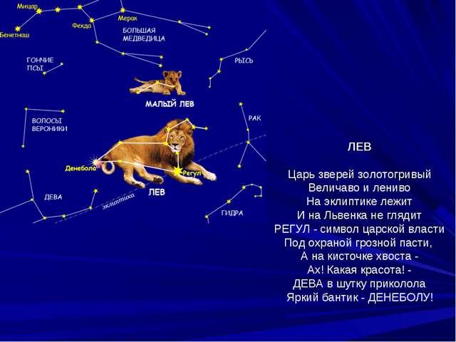 ЛЕВ Царь зверей золотогривый Величаво и лениво На эклиптике лежит И на Львенк...