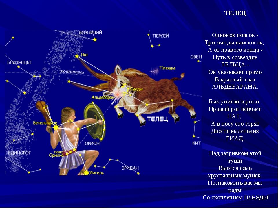 ТЕЛЕЦ Орионов поясок - Три звезды наискосок, А от правого конца - Путь в созв...