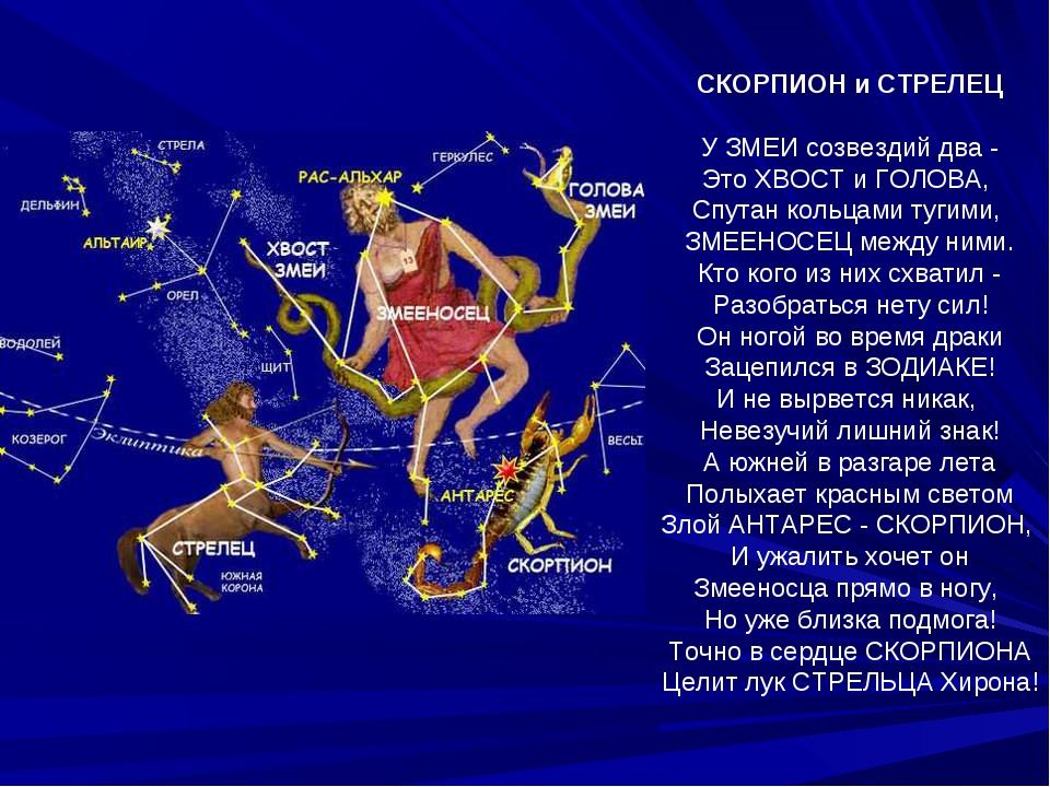 СКОРПИОН и СТРЕЛЕЦ У ЗМЕИ созвездий два - Это ХВОСТ и ГОЛОВА, Спутан кольцами...
