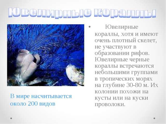 Ювелирные кораллы, хотя и имеют очень плотный скелет, не участвуют в о...