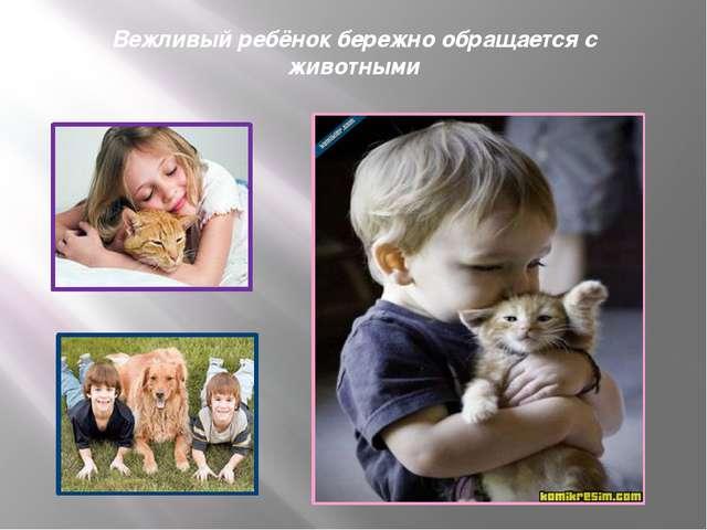 Вежливый ребёнок бережно обращается с животными