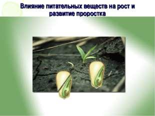 Влияние питательных веществ на рост и развитие проростка