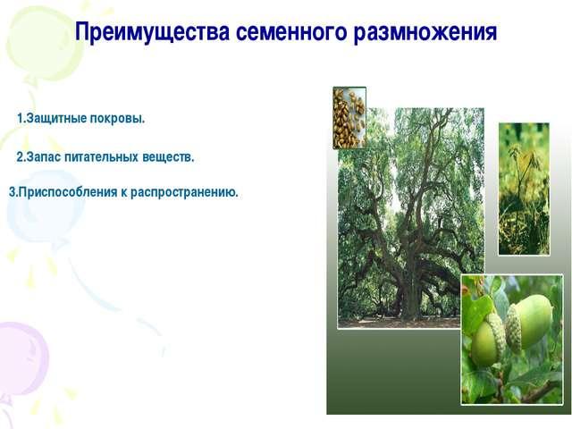 Преимущества семенного размножения 1.Защитные покровы. 2.Запас питательных ве...
