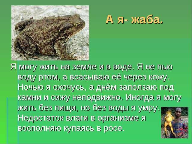 А я- жаба. Я могу жить на земле и в воде. Я не пью воду ртом, а всасываю её ч...