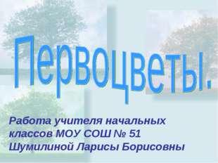 Работа учителя начальных классов МОУ СОШ № 51 Шумилиной Ларисы Борисовны