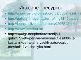 Интернет ресурсы http://www.itle-big-bigest.org.ua/podsnejniki-risunok.html h