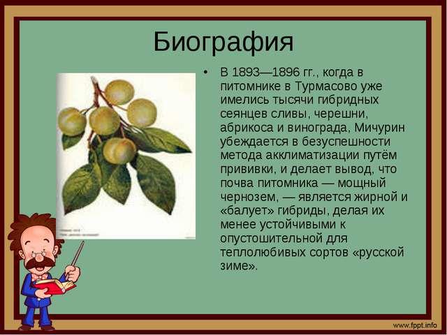 Биография В 1893—1896 гг., когда в питомнике в Турмасово уже имелись тысячи г...