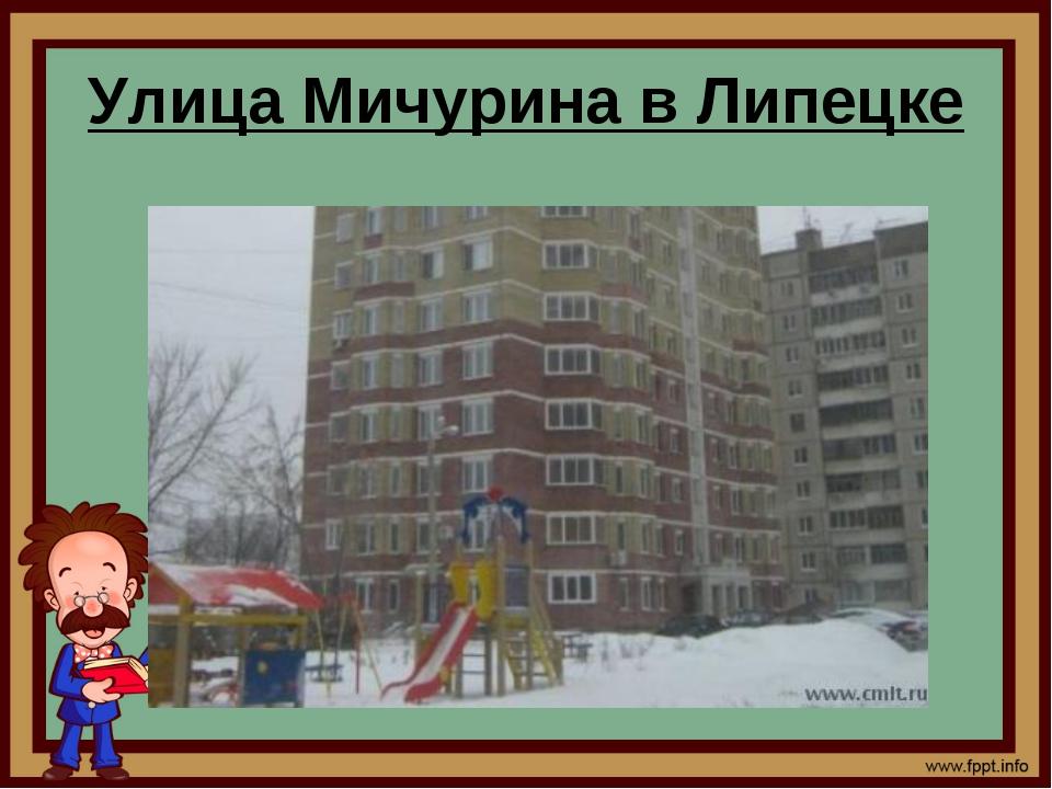 Улица Мичурина в Липецке