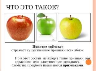 ЧТО ЭТО ТАКОЕ? Понятие «яблоко» отражает существенные признаки всех яблок. Н