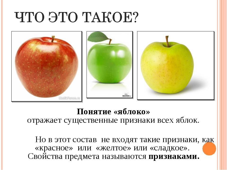 ЧТО ЭТО ТАКОЕ? Понятие «яблоко» отражает существенные признаки всех яблок. Н...