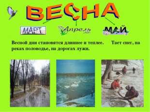 Тимошенко М.А. * Весной дни становятся длиннее и теплее. Тает снег, на реках