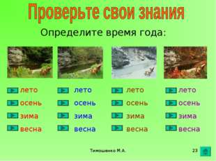 Тимошенко М.А. * Определите время года: лето осень зима весна лето осень зима