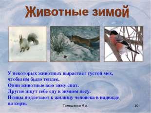 Тимошенко М.А. * У некоторых животных вырастает густой мех, чтобы им было теп