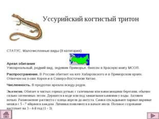 Уссурийский когтистый тритон СТАТУС. Малочисленные виды (II категория)  Ареа